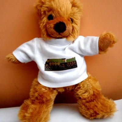 COTN Bear